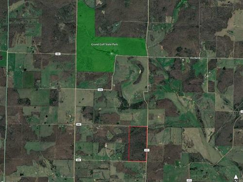 80 Acre Hunting OR Development Gro : Koshkonong : Oregon County : Missouri