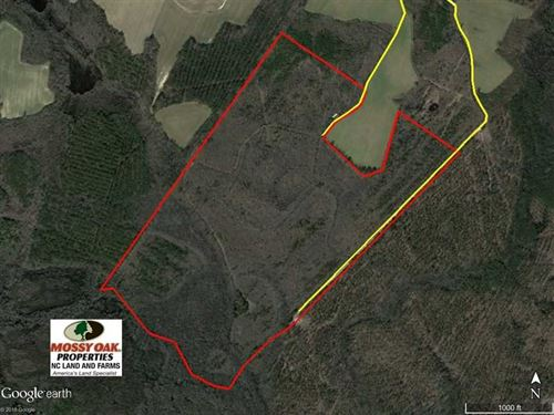 Under Contract, 167 Acres of Hunt : Enfield : Halifax County : North Carolina