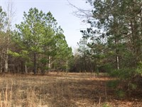 58 Acres Irwinton : Irwinton : Wilkinson County : Georgia