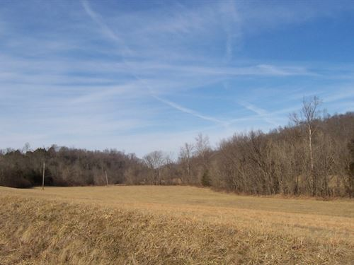 38 Acres In Monroe County, Ky : Tompkinsville : Monroe County : Kentucky