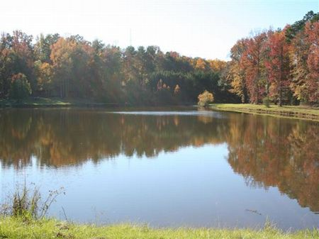 6 Stocked Ponds & Great Hunting : Augusta : Columbia County : Georgia