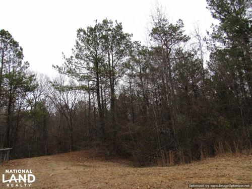 Great Price on Awesome Hunting Trac : Lexington : Holmes County : Mississippi