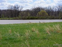 240 Ac - Cattle Farm, Hunting, &Amp : Climax Springs : Camden County : Missouri