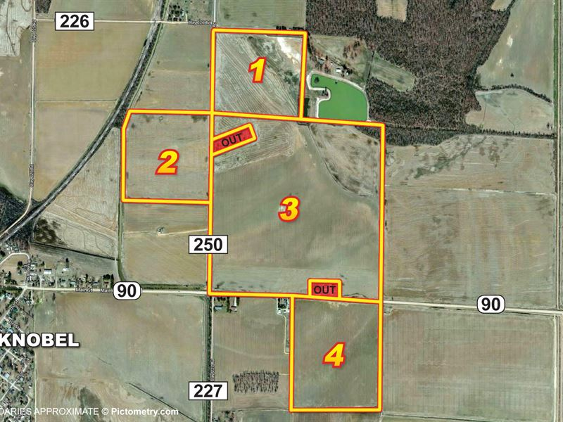 319 Acres Of Productive Farmland : Knobel : Clay County : Arkansas