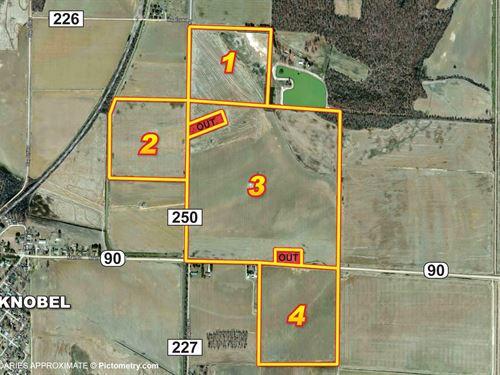 319 Acres Of Productive Farmland : Knobel : Clay County : Arkansas
