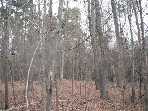65 Acres - Kershaw County, Sc : Kershaw : Lancaster County : South Carolina