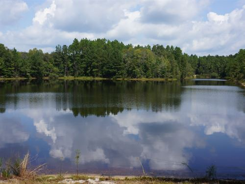Timber Investment & Hunting Tract : Westville : Holmes County : Florida