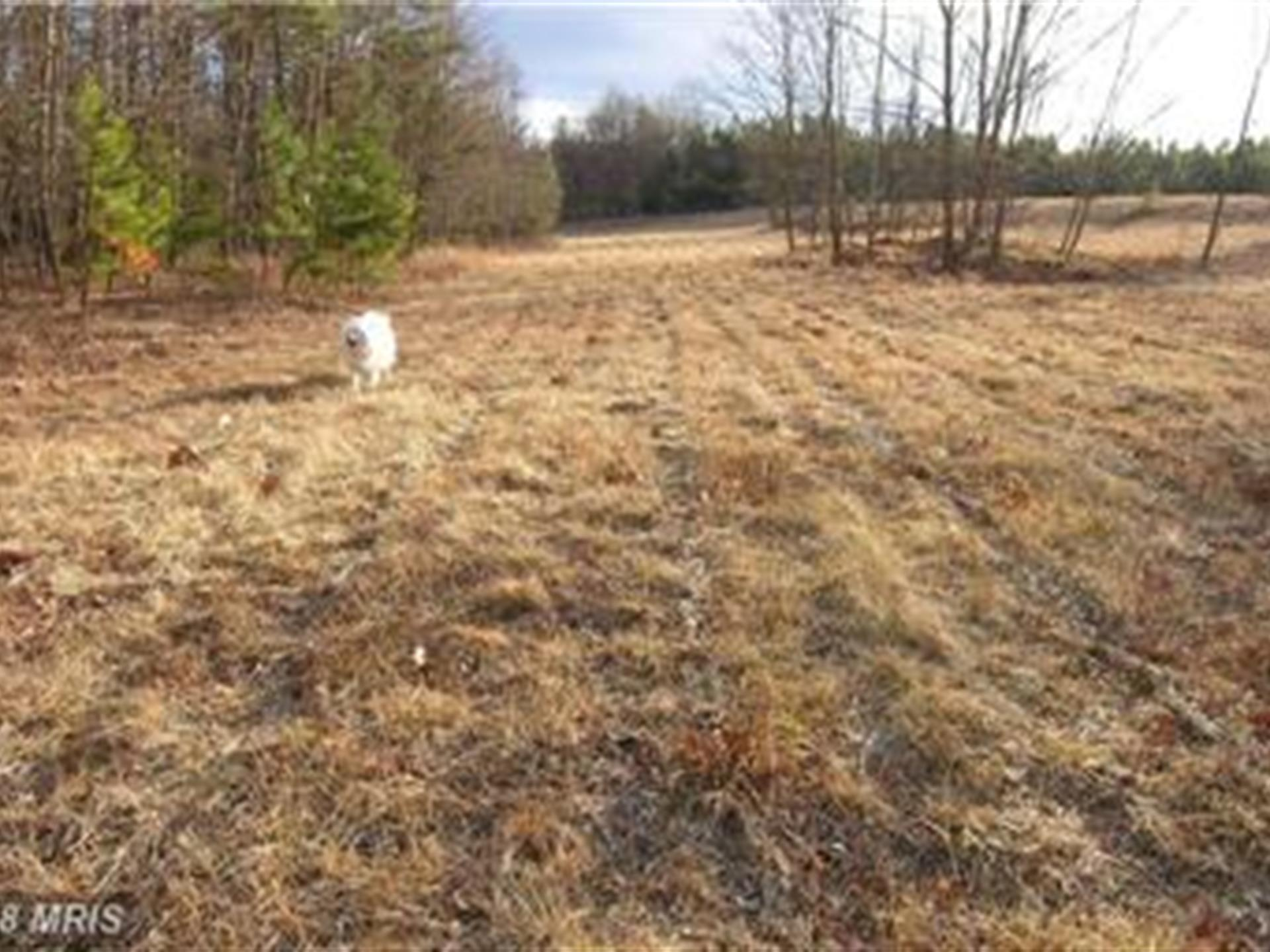 Beautiful Piece Of Property : Ranch for Sale : Moorefield : Hardy ...