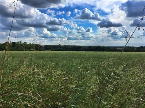 130 Acres in Cooke County TX With : Myra : Cooke County : Texas