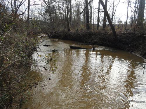 Calhoun Creek Tract 2 : Abbeville : South Carolina
