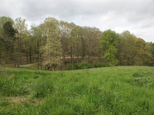Gorgeous Rolling Acreage With Pond : Canton : Cherokee County : Georgia
