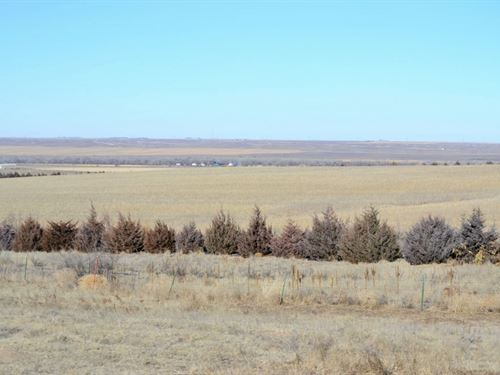 East Sedgwick County Crp & Past : Julesburg : Sedgwick County : Colorado