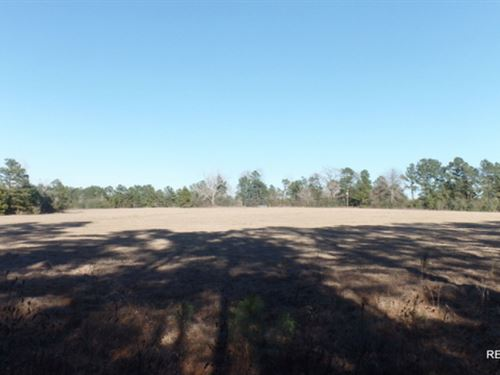 19 Ac - Small Ranch For Rural Home : Kirbyville : Jasper County : Texas