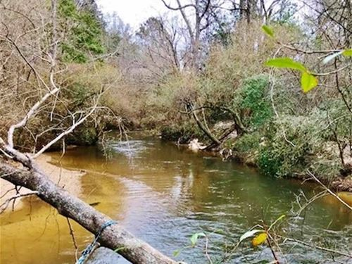 113 Acres Waterfront Property : Columbia : Marion County : Mississippi