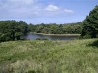 79 Acres - Fairfield County, Sc : White Oak : Fairfield County : South Carolina
