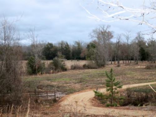 41 Acres In Forrest County, Ms : Hattiesburg : Forrest County : Mississippi