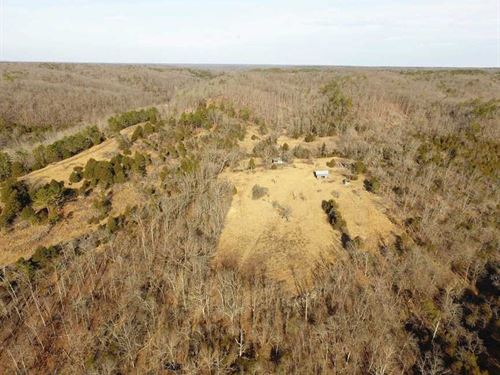 Ideal Hunting/Recreation Property : Chadwick : Christian County : Missouri