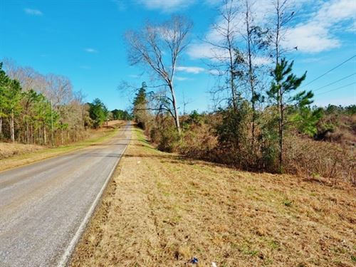 132 Acre Hunting Land Development : Summit : Pike County : Mississippi