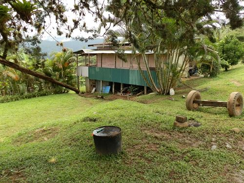 18.5 Ac Farm, House, Barn, River : Pejibaye : Costa Rica