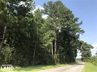 Timber And Residential Potential : Sumrall : Covington County : Mississippi