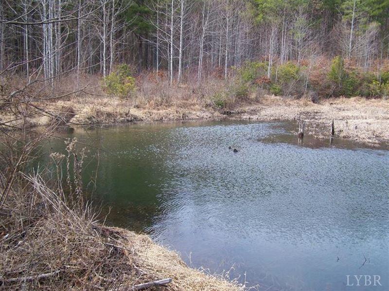 591+/- Acres Sportsman's Paradise : Wingina : Nelson County : Virginia