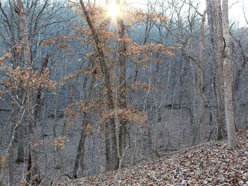 Great 82 Acre Recreational Tract : Camdenton : Camden County : Missouri