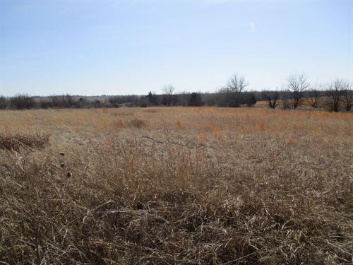 Grass & Pond, Hunting, Tillable : South Haven : Sumner County : Kansas