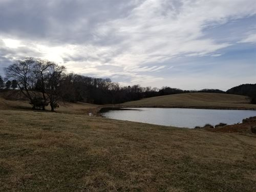 Farm With Frontage On Dan River, Va : Ringgold : Pittsylvania County : Virginia