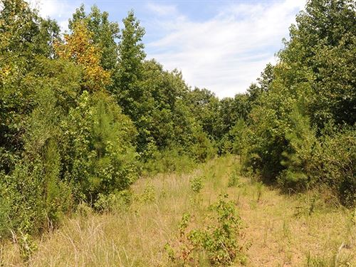 Acreage Nearby Badin Lake Nc : New London : Montgomery County : North Carolina