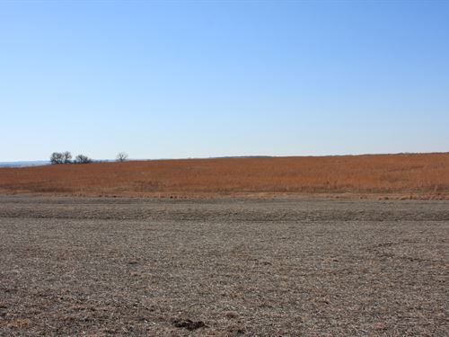 Richardson County Farm & Hunt : Humboldt : Richardson County : Nebraska