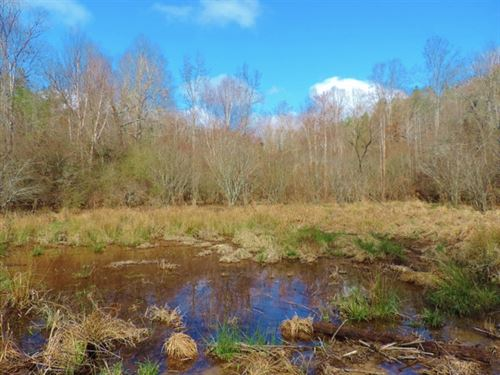 Reduced $20K, Great Hunting Get-A : Elberton : Elbert County : Georgia