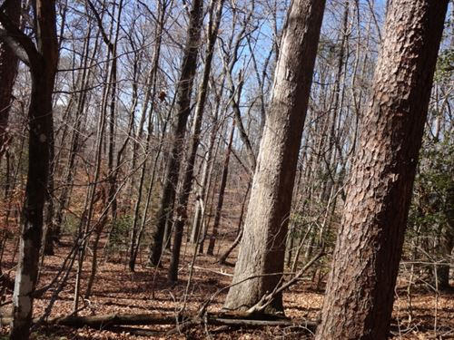 60.80 Acres Only 7 Miles From : Greenville : South Carolina
