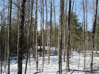 Dunkley Road Forest : Johnsburg : Warren County : New York