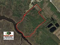 65 Acres of Waterfront Land For Sa : Swan Quarter : Hyde County : North Carolina