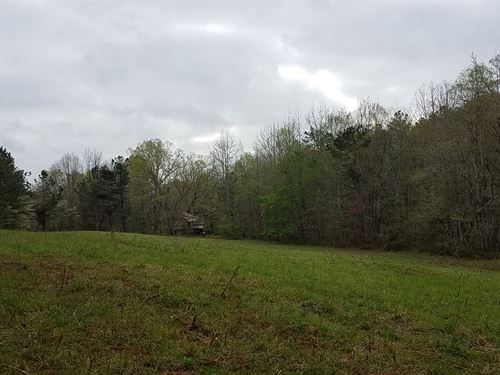 Caldwell Spring 60+/- Acres Clay Co : Cragford : Clay County : Alabama
