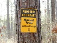 Private Country Homesite : Monticello : Jasper County : Georgia