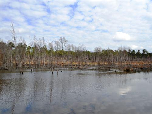 Edwards Farm : Elmore : Alabama