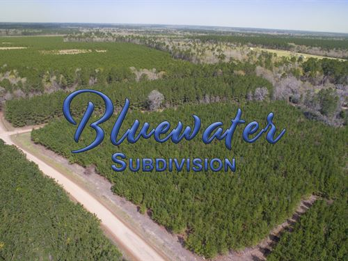 12.862 Ac T 3-4 Bluewater Rd : Schwab City : Polk County : Texas