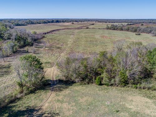 681+/- Acres Recreational : Groesbeck : Limestone County : Texas