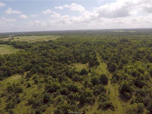 Excellent 57 Acre Recreational : Calvert : Robertson County : Texas