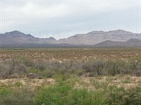 40 Acres Near Electric Only $268/Mo : Sierra : Hudspeth County : Texas