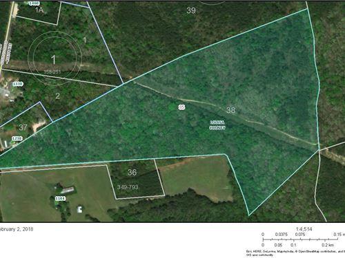 46.18 Acres Of Rolling Hills : Bumpass : Louisa County : Virginia