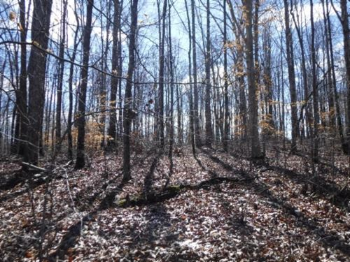 17.98Ac Wooded, Corner Lot, 3 Rd Fr : Sparta : Dekalb County : Tennessee