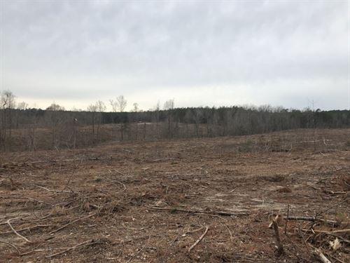 Peace Road : Carthage : Moore County : North Carolina