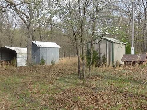 40 Acres Near Camdenton With Some : Camdenton : Camden County : Missouri