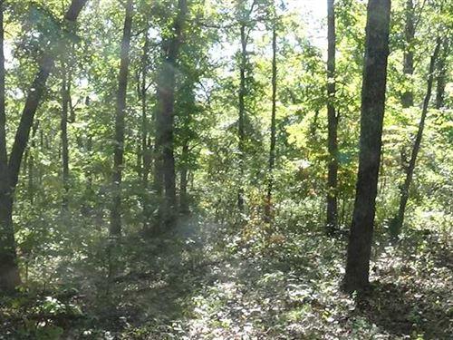 240 Acres Of Mixed Use In Macks Cr : Macks Creek : Camden County : Missouri