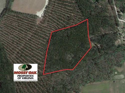 Under Contract, 16.7 Acres of Hun : Ivor : Southampton County : Virginia