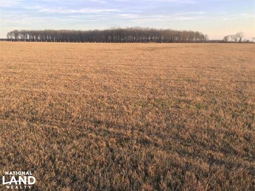 40 Acres Row Crop Farm on Raft : Searcy : White County : Arkansas