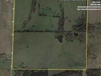 160 Acre Pasture Farm OR Great Pla : Bolivar : Polk County : Missouri
