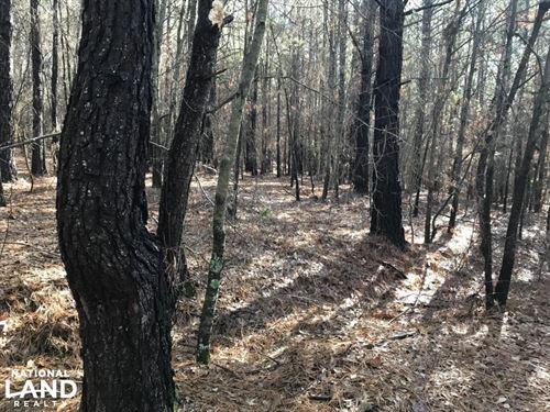10-Acre Liberty Developmental Prope : Liberty : Pickens County : South Carolina